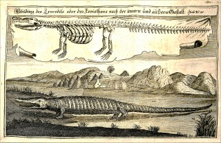 Christoph Starke, Vetus Testamentum, BS 2344 .S74 1745 Vol.3, p. 1260